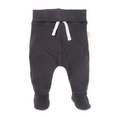 רגלית ריב אפור כהה